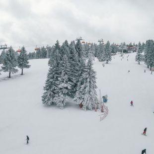 28022020-Zieleniec-Ski-Arena-5