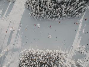 galeria-zieleniec-27-11-18-12-min